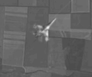 MH17-Abschuss: Ausschnitt mit Kampfflugzeug