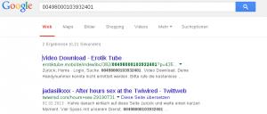 Google Anfrage nach 00498000103932401