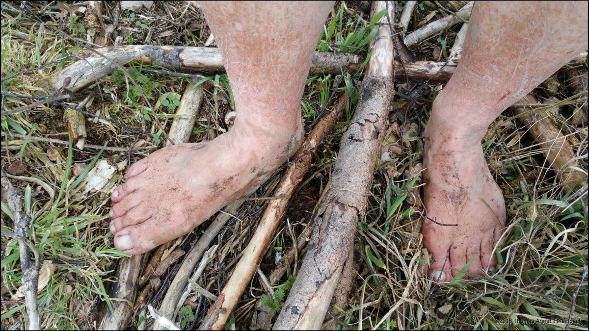 Barfuß durch´s Unterholz